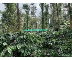 3.5 Acre Farm Land for Sale Near Mananthavady