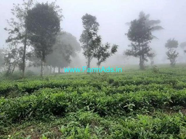 6 Acre Farm Land for Sale Near Wayanad
