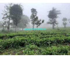 6 Acre Farm Land for Sale Near Wayanad