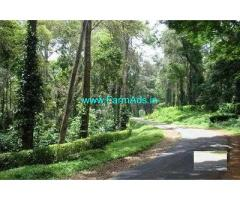 5 Acre Coffee Land for Sale Near Madikeri