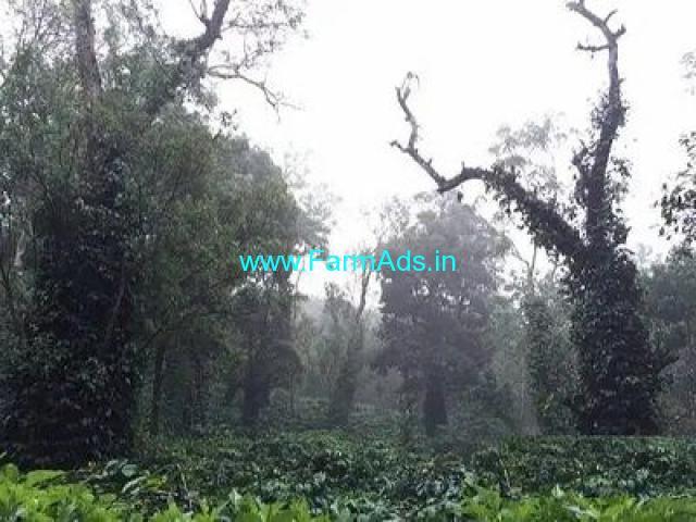 22 Acre Farm Land for Sale Near Madikeri