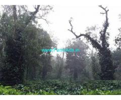 22 Acre Farm Land for Sale Near Madikeri