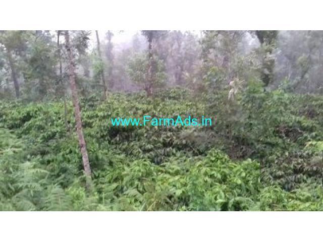 100 Acre Coffee Land for Sale Near Madikeri