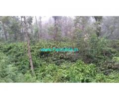 100 Acre Coffee Land for Sale Near Madikeri