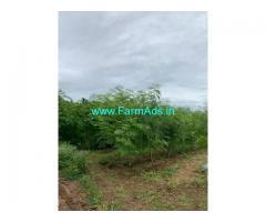 3 Acre Farm Land for Sale Near Jallipatti