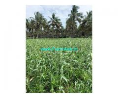 4.5 Acre Farm Land for Sale Near Vavipalayam