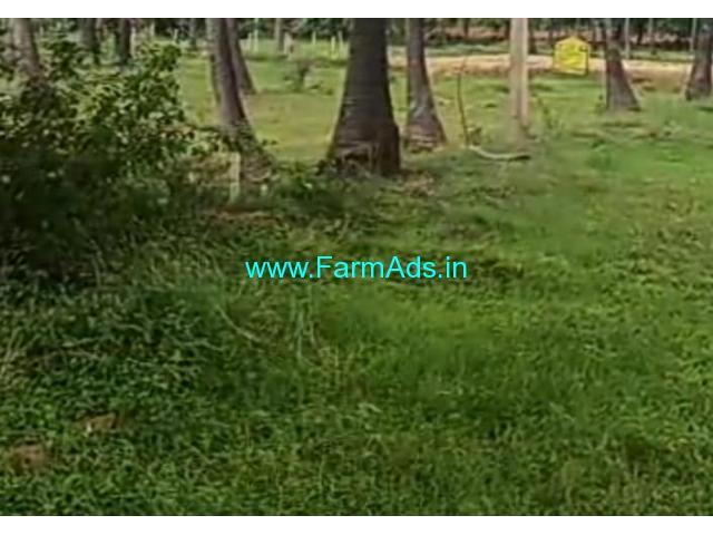5 Acre Farm Land for Sale Near Muskal
