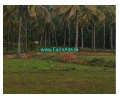 4.18 Acre Farm Land for Sale Near Hiriyur