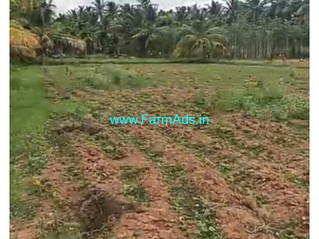 4 Acre Farm Land for Sale Near Hiriyur