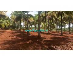 25 Acre Farm Land for Sale Near Muskal
