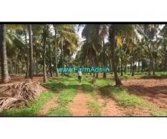 25 Acre Farm Land for Sale Near Muskal