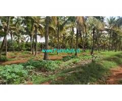 1.5 Acre Farm Land for Sale Near Muskal