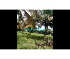 10 Acre Coconut Farm land for sale at Nanjangudu, Mysore.