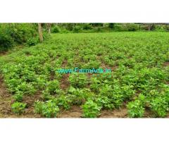15 Guntas Agriculture land for sale near Tirupathi. NND Puram. pachikapalam