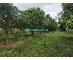 1 acres Agriculture Land Mango Farm for Sale  Ranga Reddy district