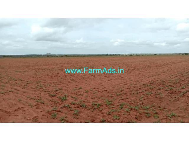 14 Acres Agriculture land for sale Hovinahole, near Hiriyur