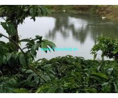 20 Acre Farm Land for Sale Near Sakleshpur