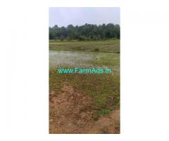 4 Acre Farm Land for Sale Near Thirthahalli