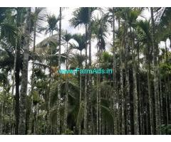 2 Acre Farm Land for Sale Near Belur