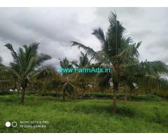 10 Acres Agriculture Land For Sale in Amruthur