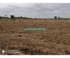 14 Acre Farm Land for Sale Near Hiriyur
