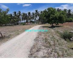 12.5 Acre Farm Land for Sale Near Pollachi