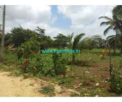 4.5 Acre Farm Land for Sale Near Doddaballapura