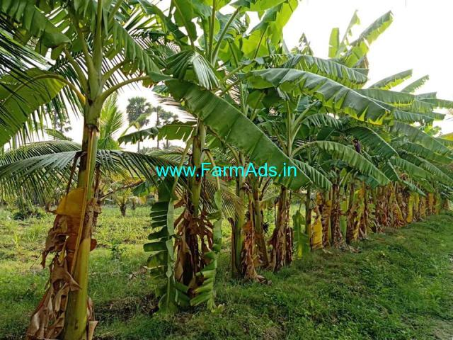 3.5 Acres of lush green agricultural land for sale at Utthangarai