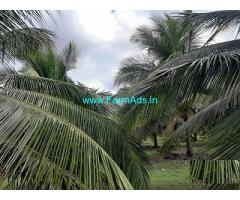 10 Acre Farm Land for Sale Near Negamam