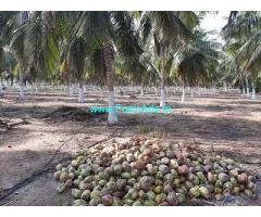 25 Acre Farm Land for Sale Near Ponnapuram