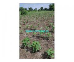 3 Acres agriculture land for sale near Mehtafkhanguda Shankarapally