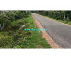 4 Acres Agriculture land and Areca Farm for sale near Hiriyur.
