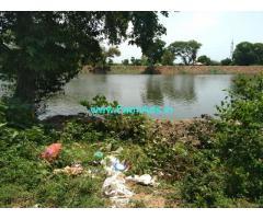 5 Acres Coconut Farm  Property in Thanjavur pattukottai bypass
