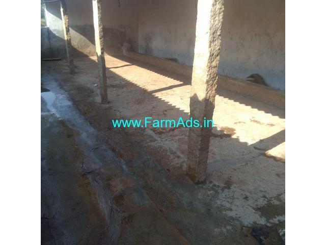 Dairy farm for rent at Doddabelavengala, Doddaballapur.
