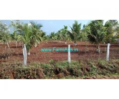 4 Acres beautiful farm land for sale in Mysore.