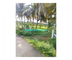 3.40 Acre Farm Land for Sale Near Pollachi