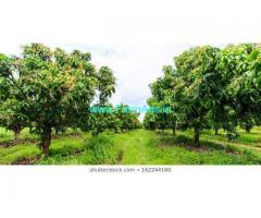 5.22 Acre Farm Land for Sale Near Harohalli