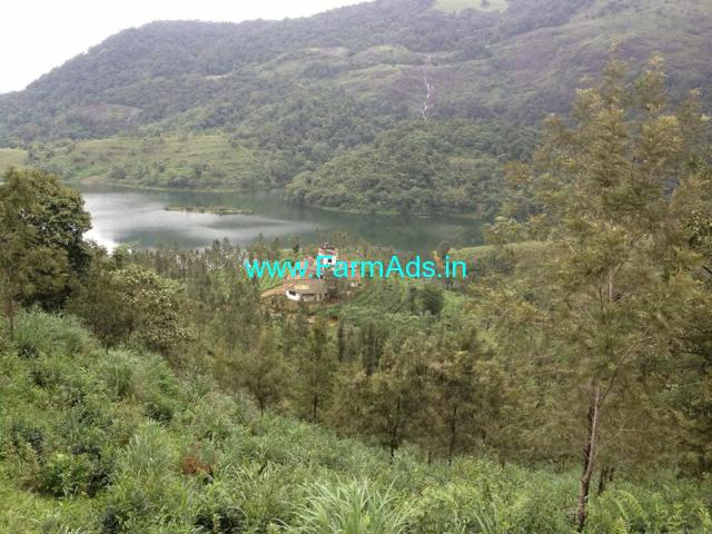 30 acre property and tea plantation for sale at wayanad