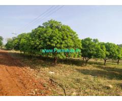 Total farm land is 27 acar for sale at Sindhanur, Raichur.