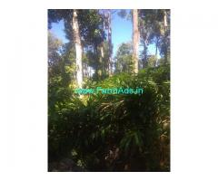150 acre cardamom plantation for sale at Santhanpara, Munnar