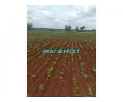 12 Acres Red soil agriculture land for sale near peddemul Vikarabad