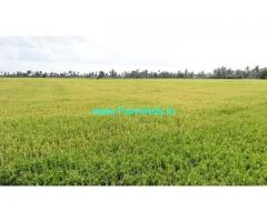 2.35 Paddy land for Sale near Duddukuru