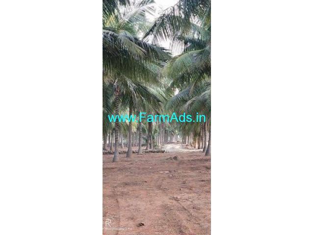 1.20 Acre Farm Land for Sale Near Udumalaipettai