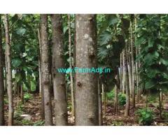 50 Acres yielding farm land for sale at Marakanam, Villupuram , TN