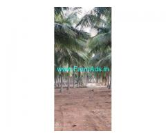 3 Acre Farm Land for Sale Near Udumalaipettai
