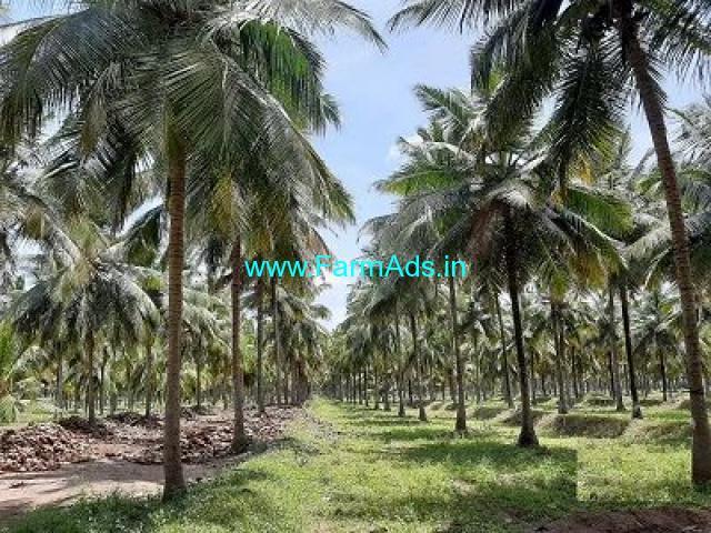 35 Acre Farm Land for Sale Near Pollachi