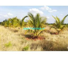 70 acres low budget agriculture farm land for sale at dindigul.