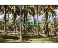 18 acres farm land for sale in Sethumadai - Pollachi
