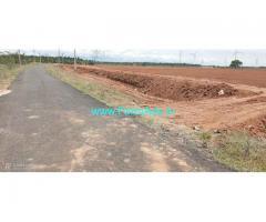 13 acres farm land for sale at Tirupur to Udumaalaipet road