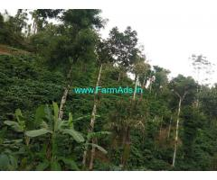 12 Acres Coffee Estate for sale 22 Kms away from Sakleshpur